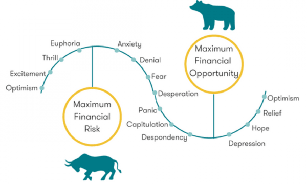 Bulls and bears - diving into market sentiment